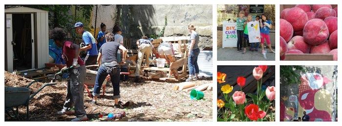 462-halsey-community-garden