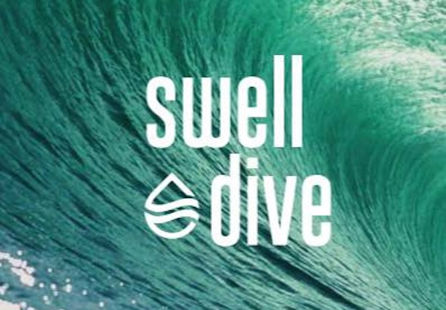 Swell Dive,  Bed Stuy, Do or Dine,  1013 Bedford Avenue